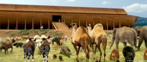 Animals Entering The Ark - Evan Almighty